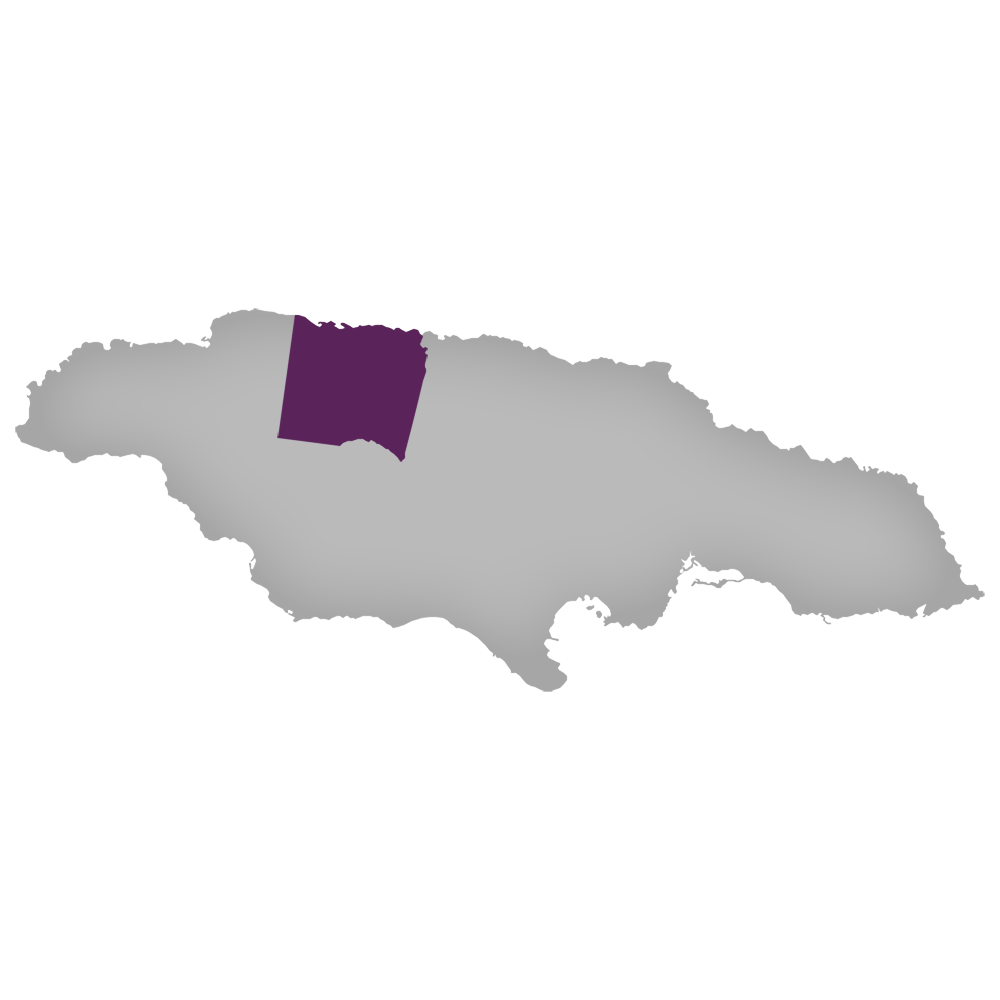 Region: Trelawny Parish