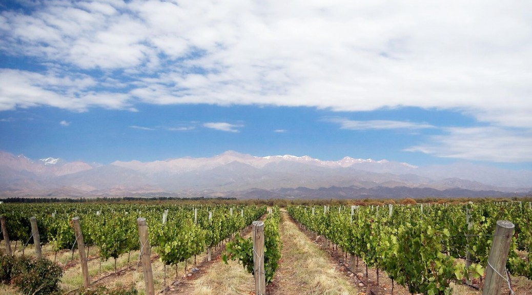 The Unique and Diverse Wine Regions of Argentina 2