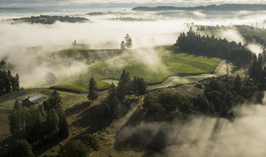 The Origins of Oregon: A Brief History of the Willamette Valley