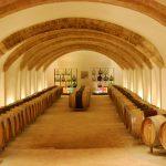 Bodegas y Vinedos El Seque