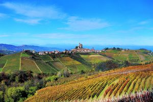 2013 Barolo: A Vintage to Remember 3