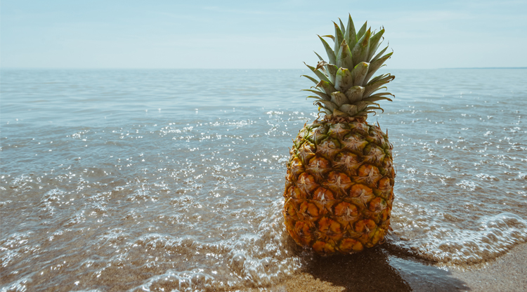 Summertime Cocktails - A Boozy Beach Day Guide