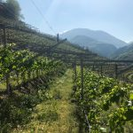 Two Days in the Alto Adige 9