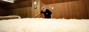 Making koji by hand in the center of the brewery