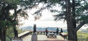 Introducing Mayacamas: 128 Years, Singular & Resilient 2