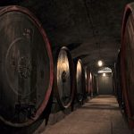 Tenuta Santa Maria di Gaetano Bertani: A Key Estate in Italian History, Culture, and Wine 10