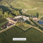 Tenuta Santa Maria di Gaetano Bertani: A Key Estate in Italian History, Culture, and Wine 1