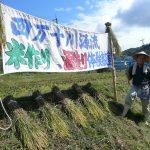 The Kids Are Alright: Fresh, Brash and Youthful Sake Muroka Nama Genshu 7