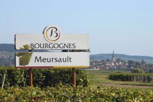 A Tale of Two Meursaults 4