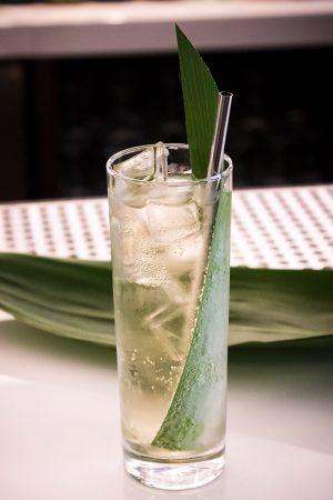 Bamboo Tonic