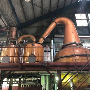 TOP RANKING: A Deeper Dive into the Magic of True Jamaican Rum 12