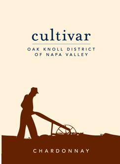 Chardonnay 'Oak Knoll - Napa Valley', Cultivar