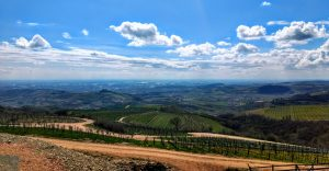 Back to the Future of Soave (and Valpolicella)! 2