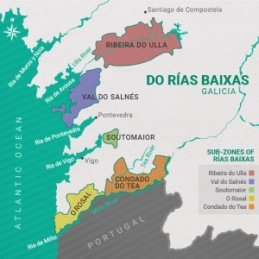 The Lost World: Pre-Phylloxera Albariño in the Val do Salnés 8