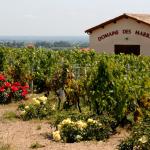 Domaine des Marrans | Fleurie