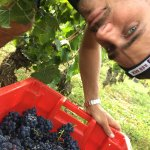 Thibaud Clerget of Domaine Yvon Clerget in Volnay