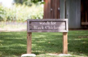 Biale Black Chicken