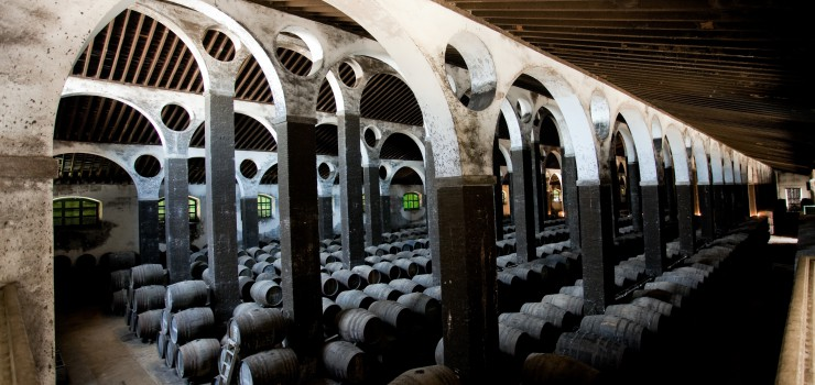 In a Kingdom by the Sea: The Wines of Bodegas Barbadillo 1