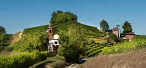 Malvirà: The Last Great Stash of Cellar-Aged Older Wines in Piedmont?! 3