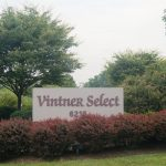 Welcome to Skurnik Wines Vintner Select! 4