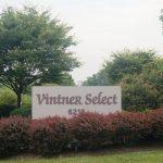 Welcome to Skurnik Wines Vintner Select! 4
