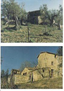 Uccelliera: Andrea Cortonesi's Deep Roots in Montalcino 1