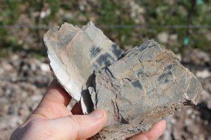 Nahe: Geologist's Paradise  19