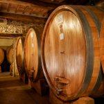 Uccelliera: Andrea Cortonesi's Deep Roots in Montalcino 13
