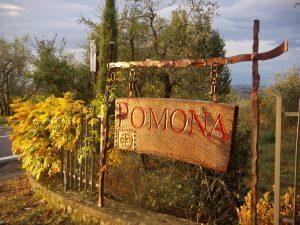 Comunicato Stampa! Press Release for the Italian Portfolio! 3
