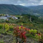 Alvaredos-Hobbs: Paul Hobbs Turns to Galicia