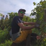 2021 Harvest Notes from France 9