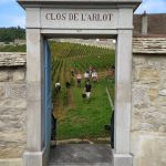 2021 Harvest Notes from France 10