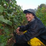 2021 Harvest Notes from France 12